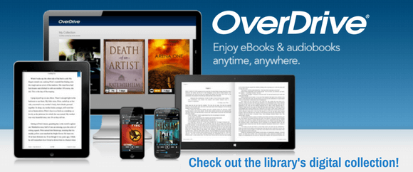 Check out the library's digital collection on NEFLIN OverDrive